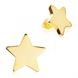 Gold Plated Star Dermal Anchor Head