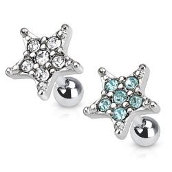 Surgical Steel CZ Gem Star Tragus / Cartilage / Helix / Conch / Stud